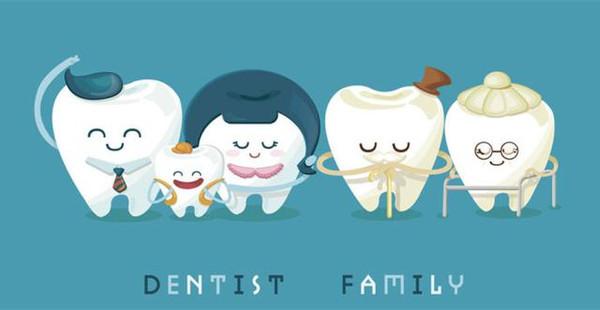 换一颗牙齿要多少钱