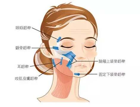 上海美莱面部线雕哪个医生做的好
