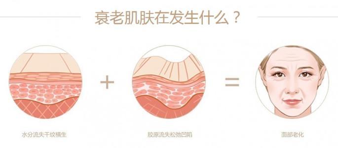 上海去川字纹多少钱